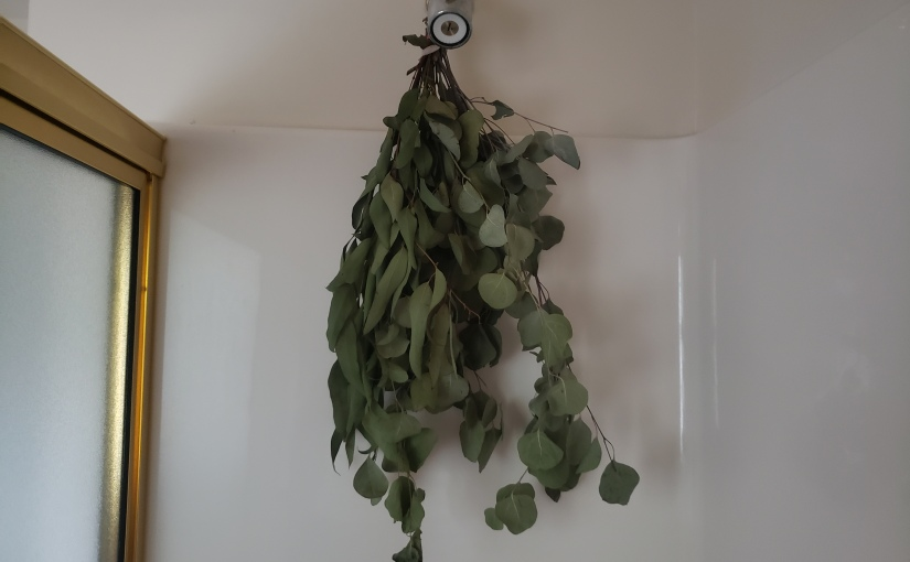 Benefits of Using Eucalyptus in theShower