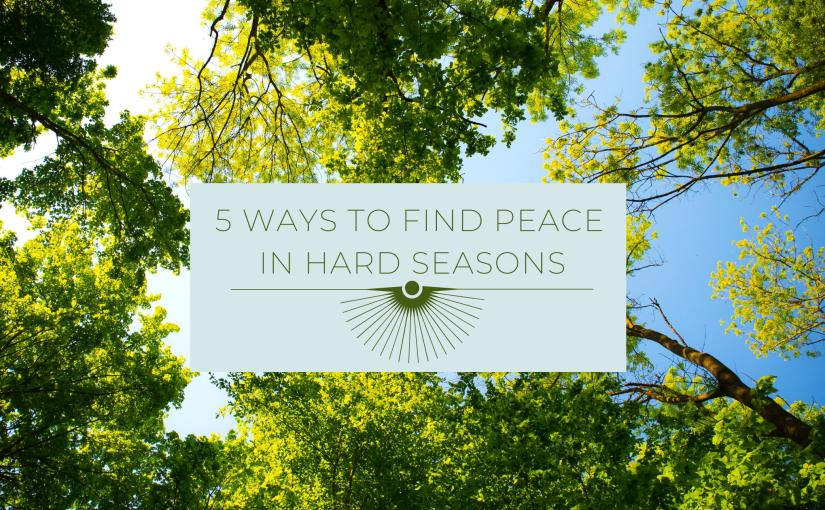5 Ways to Find Peace in HardSeasons