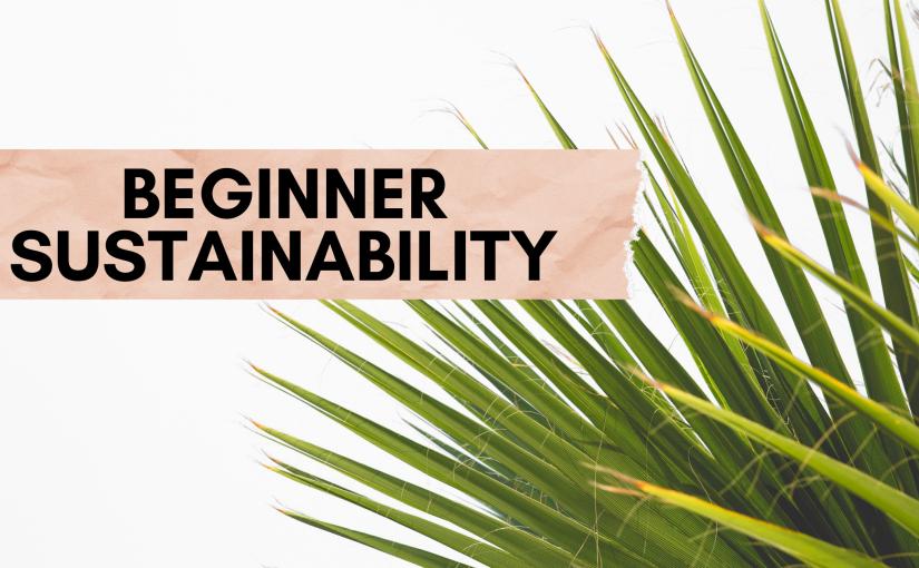 Beginning the Sustainability Journey in thePandemic
